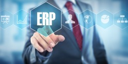 ERP system examples